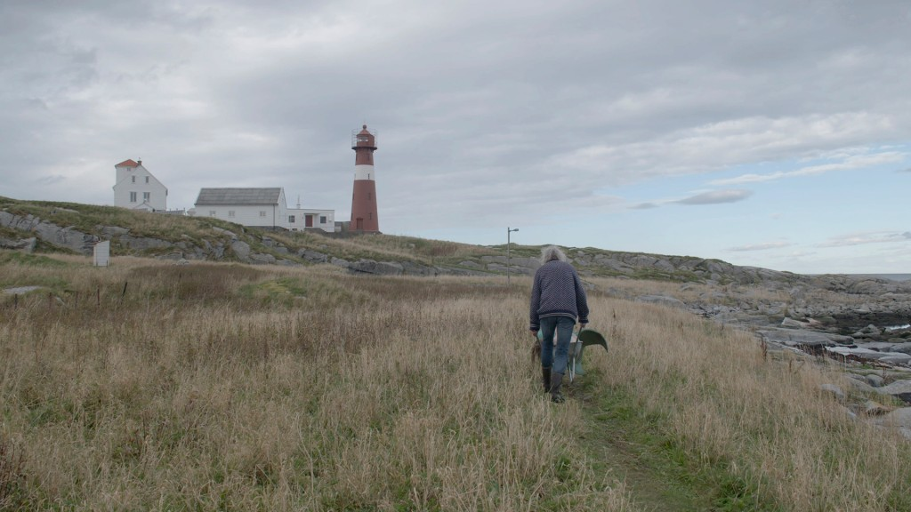 A man pushes a wheelbarrow, with what seems to be a mermaid sitting inside it, up a grass path towards a lighthouse in the distance. From 'Bathtub by the Sea'