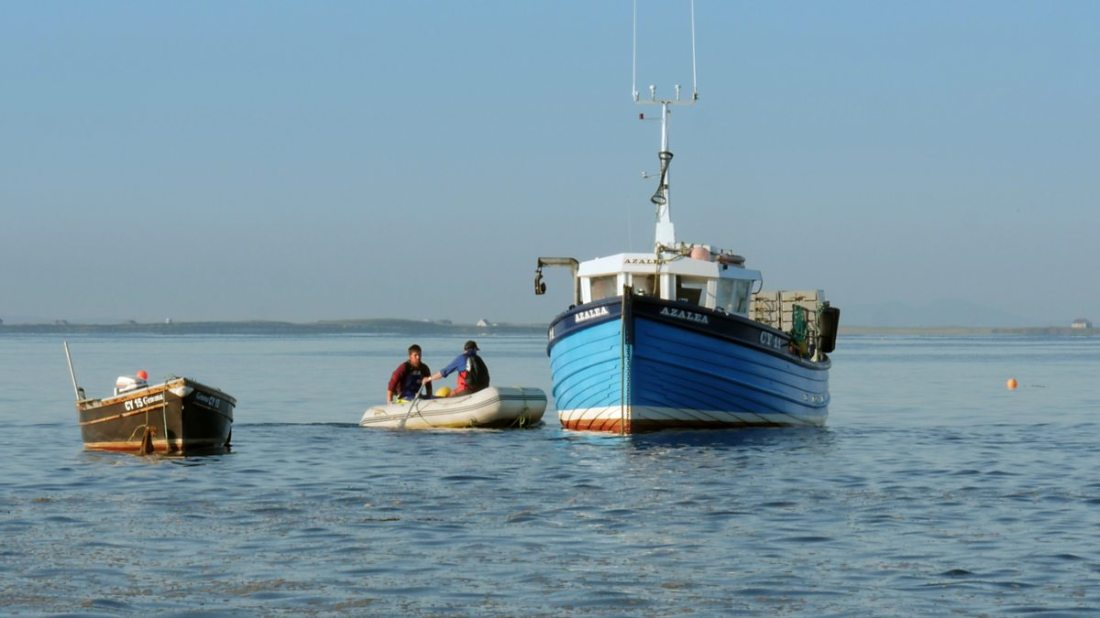Image from the film 'Iorram (Boat Song)'. Three boats sit in the water, a fairly small blue boat sits at the centre, with a smaller brown boat to its left. Between them, two men on a lifeboat paddle towards the bigger boat.