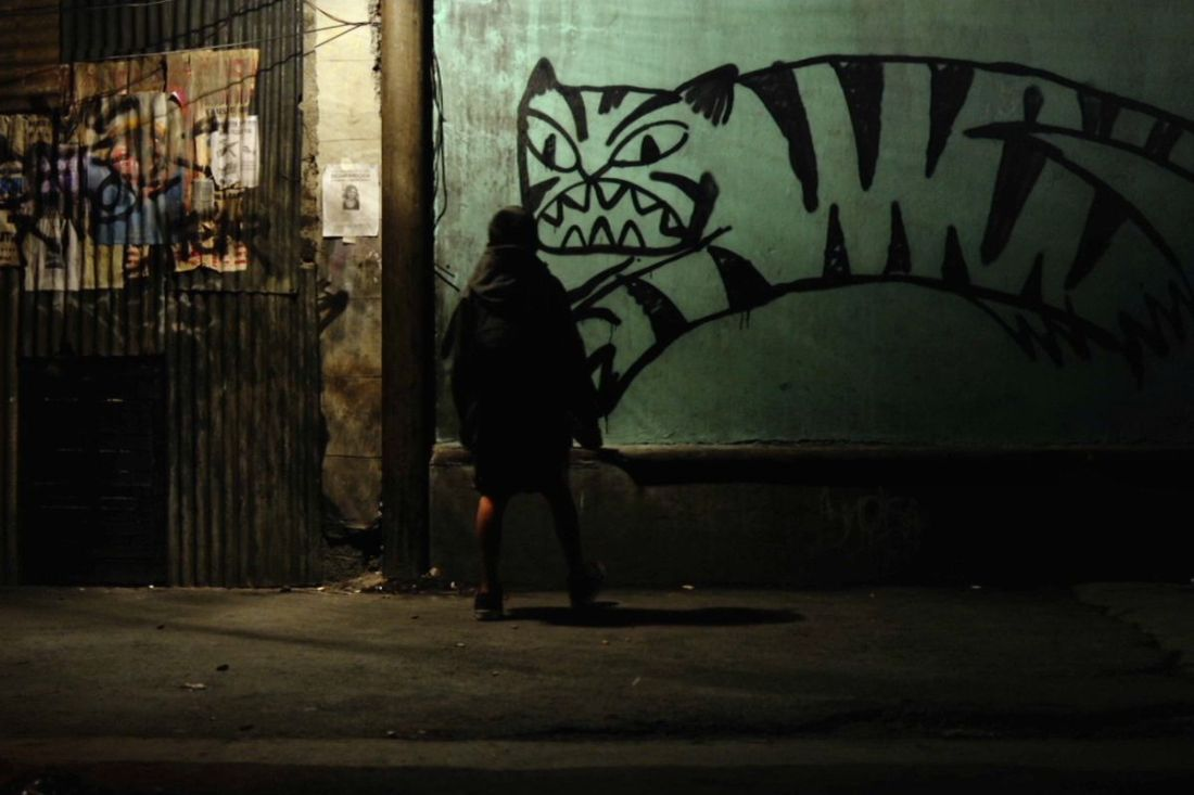 Image is from the film 'Tigers Are Not Afraid' (2017). A person wearing a black coat looks at a graffiti drawing of a tiger on a green wall in the middle of the night.